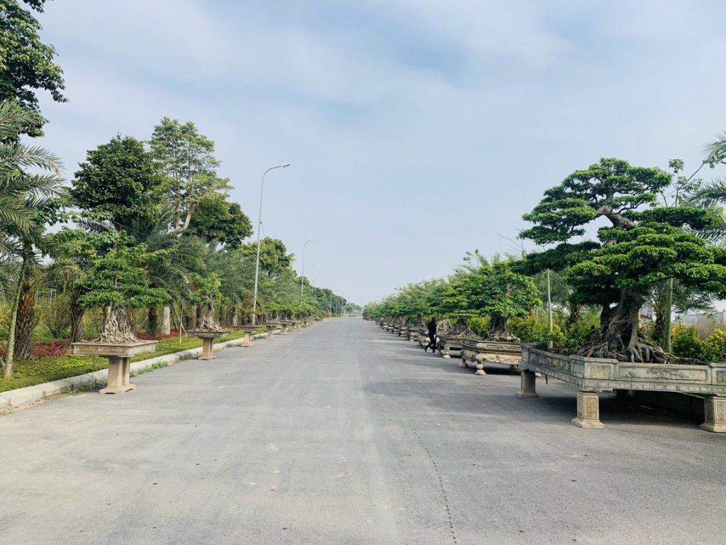 dat nen du an Nam Hong garden Tu Son